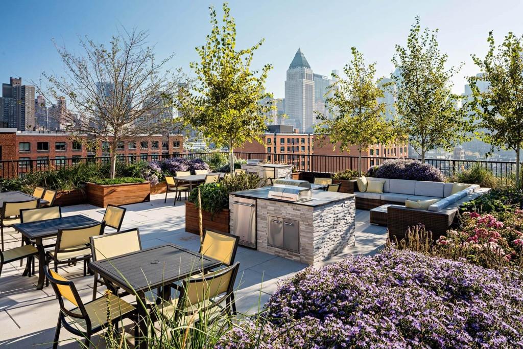 silverback development, silverback real estate, silverback, silverback new york city, silverback nyc, 535 west 43rd street, rooftop
